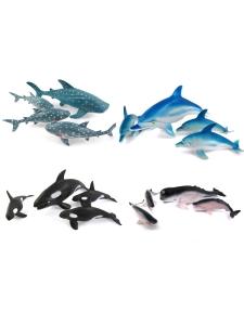 Hajar / Delfiner, olika sorter