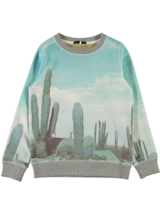 Name It Sweatshirt Joey Kaktusar